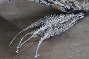 Šampáň umelá dekoračná tráva 25 cm
