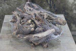 Hnedé prírodné korene v sieťke 0,5kg