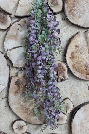 Fialovo zelená umelá rastlina senecio 80cm