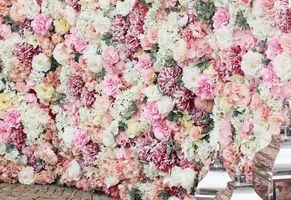 Kvetinové steny
