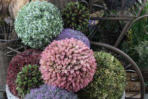 Kvetinové gule
