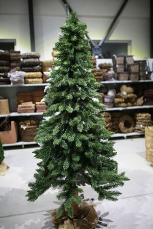 Vianočný stromček na pníku 210cm