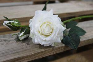 Biela umelá ruža s pukmi 42cm