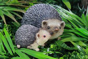 Hnedý ježkovia so sivými pichliačmi 18cm