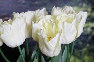Krémový umelý tulipán s listami 67cm