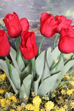 Červený umelý tulipán s listami 67cm