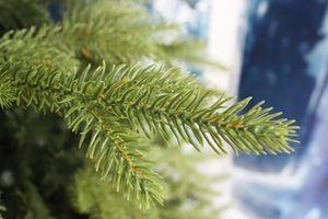 Karácsonyfa műfenyő
