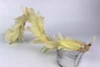 Žltý páv s dlhým chvostom