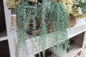 Zelený umelý trs rastliny senecio 60cm