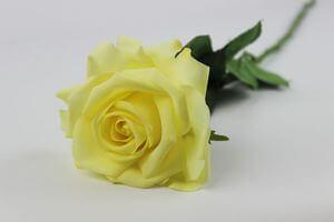 Žltá umelá ruža na stonke s listami 66cm