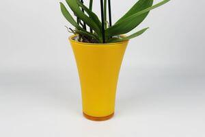 Žltý plastový kvetináč na orchideu 20 cm