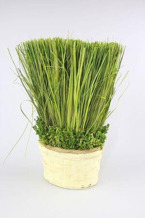 Zelený aranžmán v krémovom kvetináči 28cm