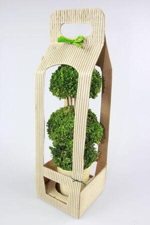 Zelený sušený bonsaj v darčekovom balení