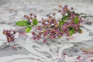 Ružová umelá jarná vetvička s kvetkami 56cm