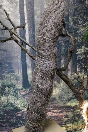 Sivý prírodný lesný snop 1kg