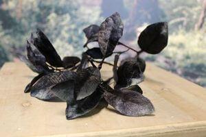 Čierny umelý zamatový konár 63cm