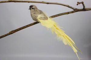 Hnedo žltý vtáčik na štipci s dlhým chvostom 25cm