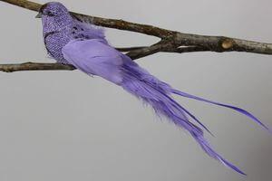 Fialový vtáčik na štipci s dlhým chvostom 25cm