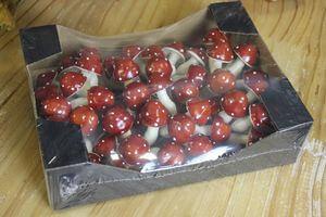 Červené hríbiky muchotrávky 48 ks