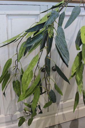 Zelený eukalyptus dlhý previsnutý 140 cm
