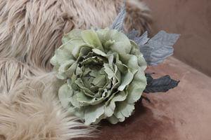 Bledozelená sametová ruža 14cm