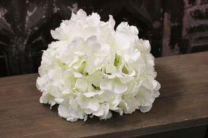 Biela hortenzia hlava 20cm